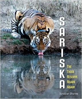 Sariska: The Tiger Reserve Roars Again