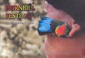 Hornbill Festival: Visual Renderings That Tell