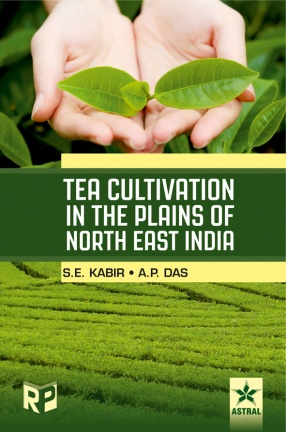 Tea Cultivation In The Plains of North East India
