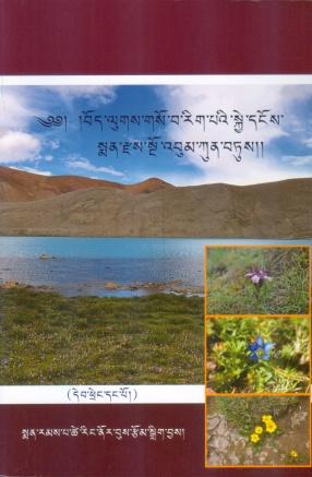 Bod Lugs Gso Ba Rig Pa'i Skye Dnos Sman Rdzas Sno 'Bum Kun Btus (In 2 Volumes)
