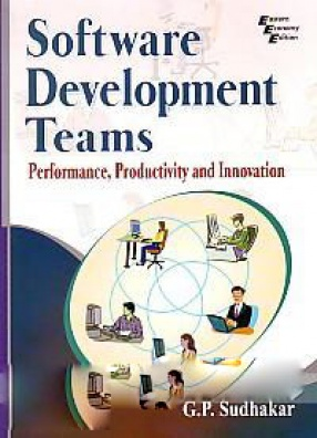 Software Development Teams: Performance, Productivity and Innovation