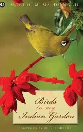 Birds in My Indian Garden