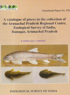 A Catalogue of Pisces in the Collection of the Arunachal Pradesh Regional Centre, Zoological Survey of India, Itanagar, Arunachal Pradesh