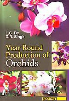 Year Round Production of Orchids