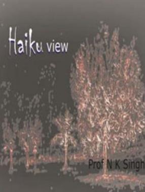 Haiku View