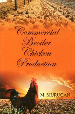 Commercial Broiler Chicken Production