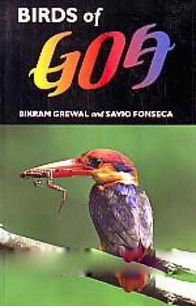 Birds of Goa