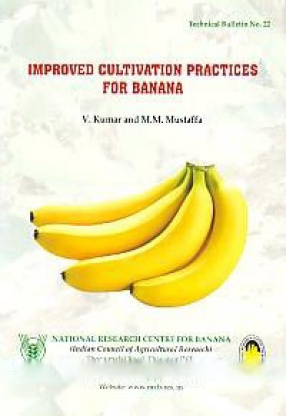 Improved Cultivation Practices for Banana