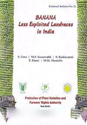 Banana: Less Exploited Landraces in India