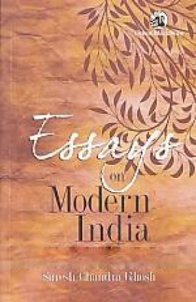 Essays on Modern India