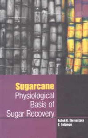Sugarcane: Physiological Basis of Sugar Recovery