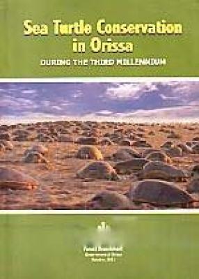 Sea Turtle Conservation in Orissa: During the Third Millennium
