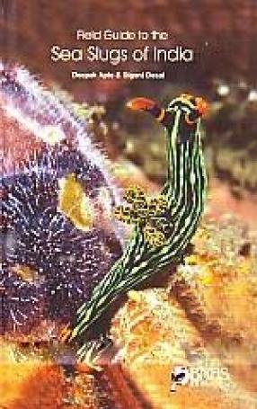 Field Guide to the Sea Slugs of India