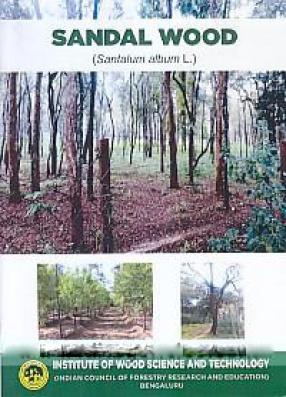 Sandal Wood (Santalum Album L.)