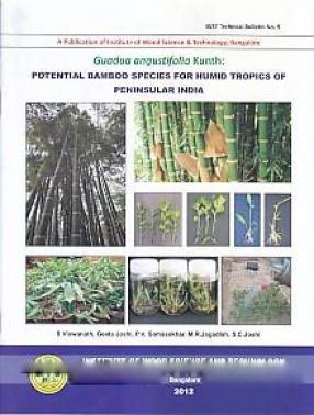 Guadua Angustifolia Kunth: Potential Bamboo Species for Humid Tropics of Peninsular India