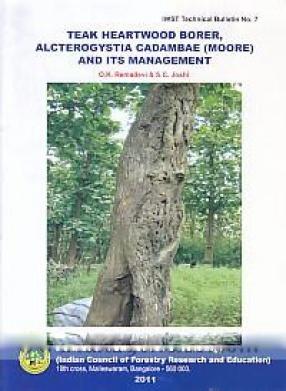Teak Heartwood Border, Alcterogystia Cadambae (Moore) and its Management