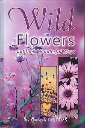 Wild Flowers and Their Wonderful Ways