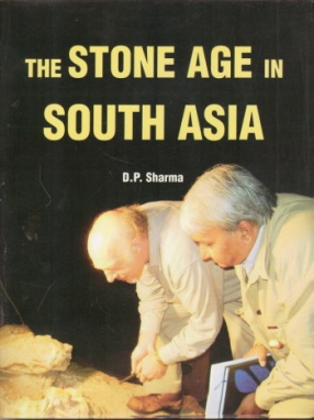 The Stone Age in South Asia
