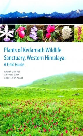 Plants of Kedarnath Wildlife Sanctuary, Western Himalaya: A Field Guide