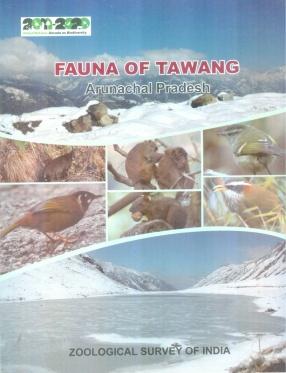 Fauna of Tawang Arunachal Pradesh