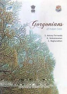 Gorgonians of Indian Seas