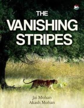 The Vanishing Stripes