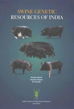 Swine Genetic Resources of India