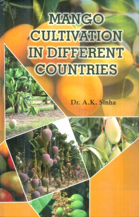 Mango Cultivation in Different Countries