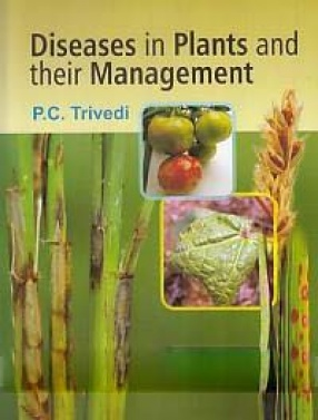 Diseases in Plants and Their Management