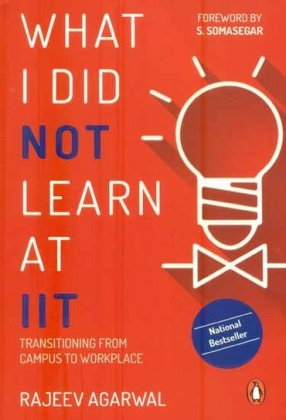 What I Did Not Learn At IIT: Transitioning From Campus to Workplace