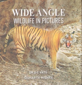 Wide Angle Wildlife in Pictures