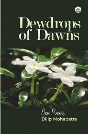 Dewdrops of Dawns