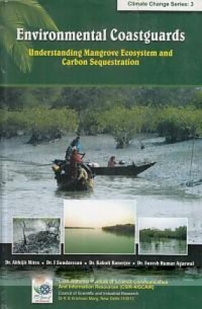 Environmental Coastguards: Understanding Mangrove Ecosystem and Carbon Sequestration