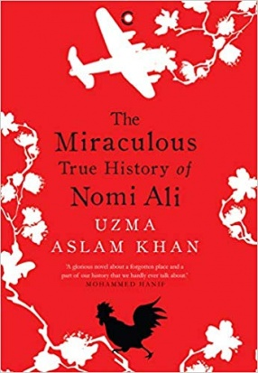 The Miraculous True History of Nomi Ali