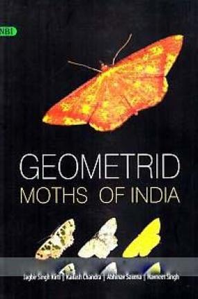 Geometrid Moths of India