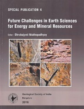 Future Challenges in Earth Sciences for Energy and Mineral Resources