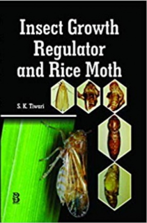 Insect Growth Regulator and Rice Moth