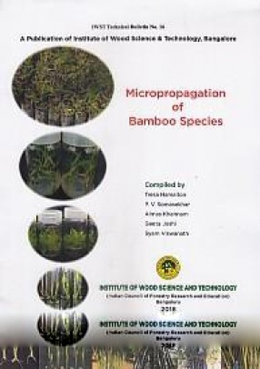 Micropropagation of Bamboo Species