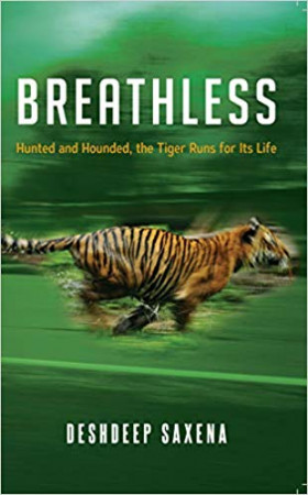 Breathless: Hunted and Hounded, the Tiger Runs for its Life