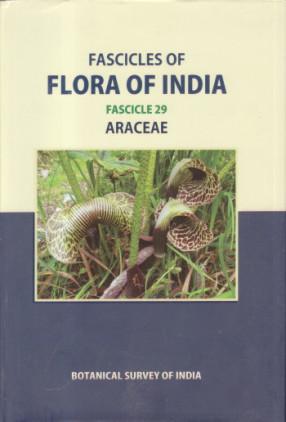 Fascicles of Flora of India: Fascicle 29: Araceae