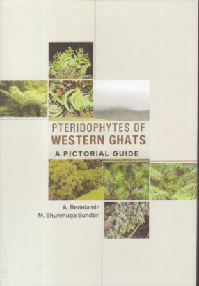 Pteridophytes of Western Ghats: A Pictorial Guide