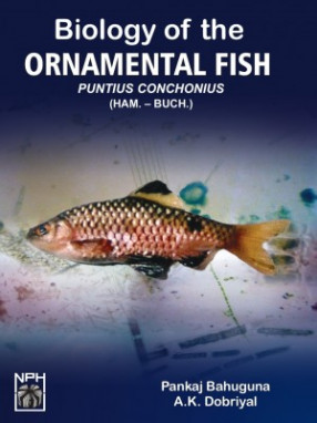 Biology of the Ornamental Fish: Puntius-Conchonius (HAM.-BUCH.)