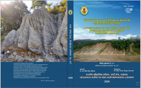 Lithostratigraphy and Biostratigraphy of Siwalik Group of Rocks of Northwest Himalaya