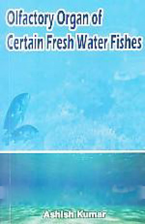 Olfactory Organ of Certain Fresh Water Fishes: A Case Study