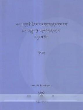 Bdud Rtsi Snying Po Yan Lag Brgyad Pa Gsang Ba Man Ngag Rgyud Kyi 'Bru 'Grel Zhes Bya Ba Bzhugs So