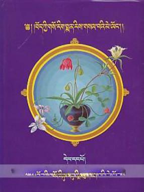 Bod Kyi Gso Ba Rig Pa'i Sman Rdzas Dpe Ris Gsal Ba'i Me Lon Blo Gsar Dgyes Pa'i Nin Byed (In 2 Volumes)
