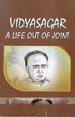 Vidyasagar: A Life Out of Joint