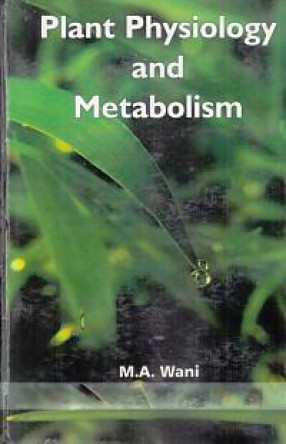 Plant Physiology and Metabolism: As Per new Choice Based Credit System (CBCS)