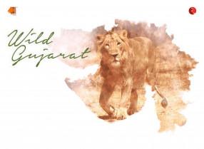 Wild Gujarat