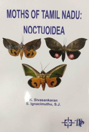 Moths of Tamil Nadu: Noctuoidea